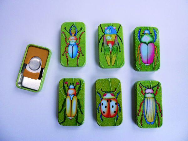 Knack-Insekten 6er Set