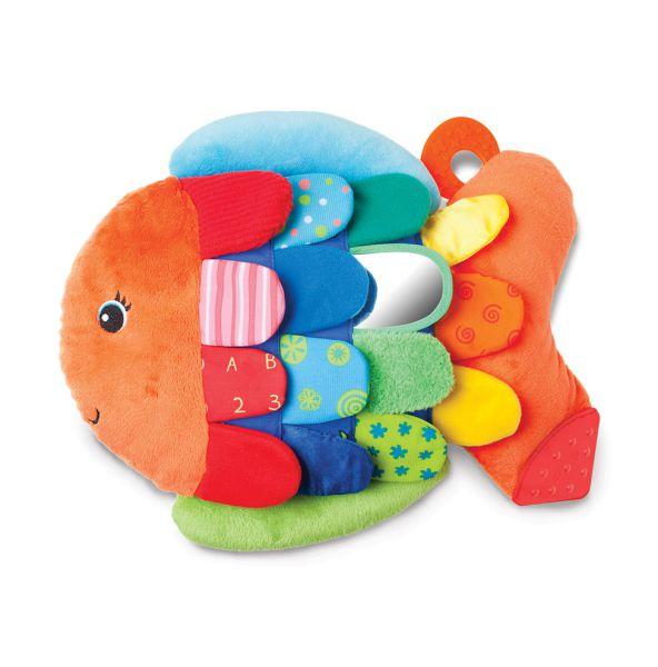 Riesen-Regenbogenfisch